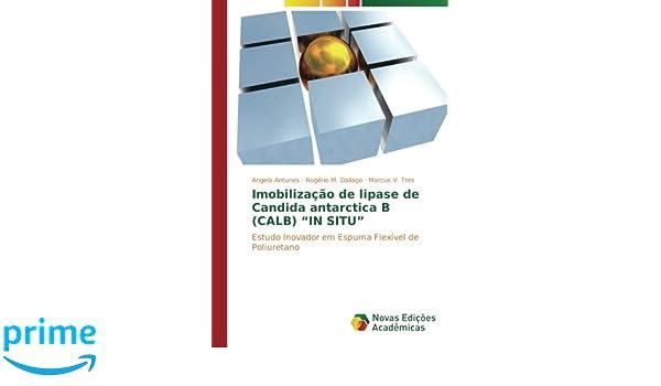Imobilização de lipase de Candida antarctica B (CALB)