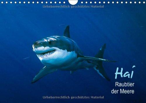 Hai – Raubtier der Meere (Wandkalender 2014 DIN A4 quer): Der Fluch des Films (Monatskalender, 14 Seiten)