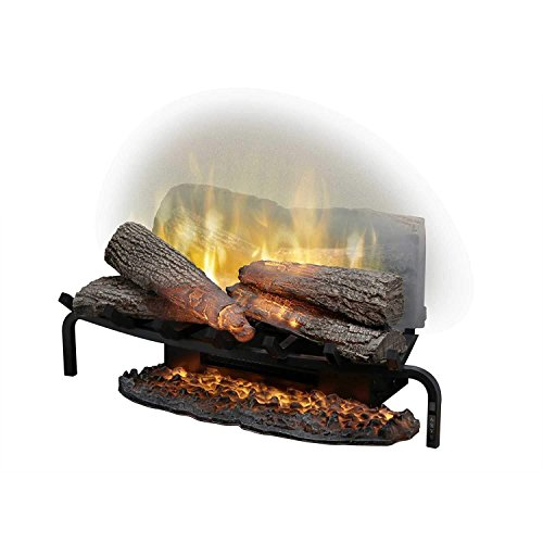 Outdoor See Through Fireplace (DIMPLEX NORTH AMERICA RLG25 Revillusion Electric Fireplace)