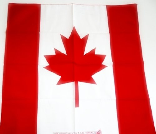 Amazon com : 1x 20 inches Cotton CANADA Flag Head Neck