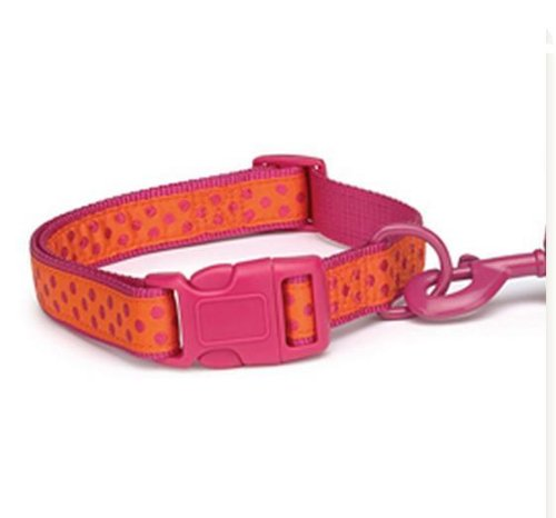 Inch Nylon Brite Polka Dot Dog Neck Collar, Raspberry (Nylon Dog Collar Raspberry)