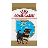Royal Canin Croquetas para Yorkshire Terrier Puppy, 1.13 kg (El empaque puede variar)
