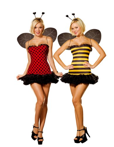 Cute Bumble Bee Halloween Costume (Dreamgirl Women's Reversible Bumble Bee/Lady Bug Costume, Multi,)