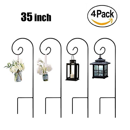 Low Light Hanging Plants For Outdoors - 2