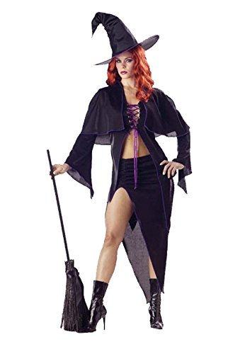 California Costumes Spellbound Witch Adult Costume - Black/Purple, (Spellbound Witch Costumes)