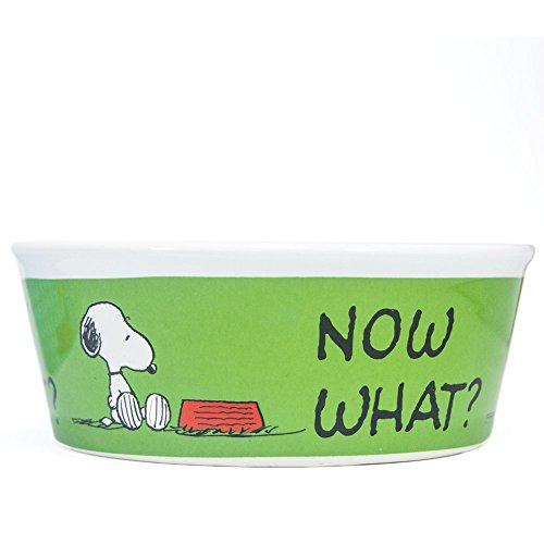 Peanuts Snoopy Green Dog Bowl - Heavy Stoneware Pet Dish (5 Inch Wide) ()