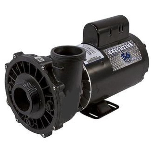 Waterway Plastics 3721621-1 4-Horsepower Dual Speed Thru-Bolt Motor Replacement for Pool and Spa Pump