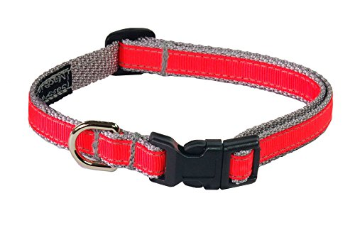 extra small neon dog collar - 6