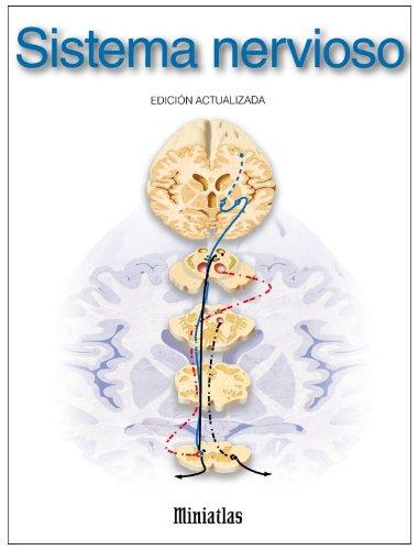 Miniatlas Sistema Nervioso Spanish Edition