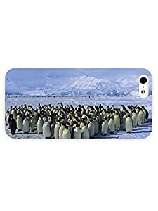 3d Full Wrap Case for iPhone 5/5s Animal - Emperor Colony24 Penguin