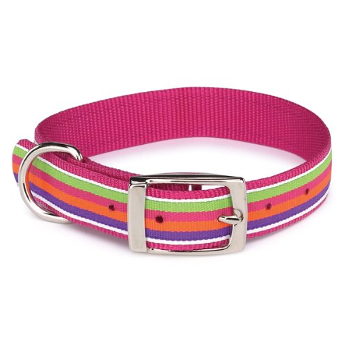 Zack and Zoey Nylon Brite Stripe Dog Collar, 18 to 22-Inch, Raspberry, My Pet Supplies