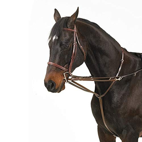 Camelot German Martingale Rein -