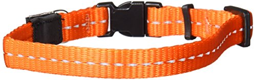 ROGZ Utility Small 3/8-Inch Reflective Nitelife Dog Collar, Orange