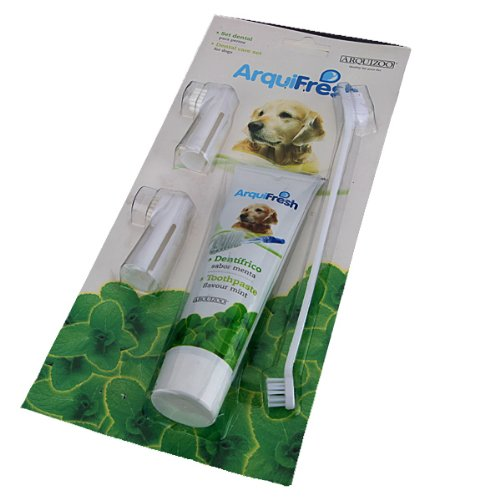 arquifresh toothbrush toothpaste set kit for dog 4 pieces