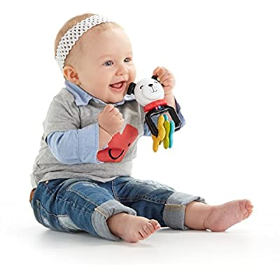 Fisher-Price Puppy Pal Clackers : Baby