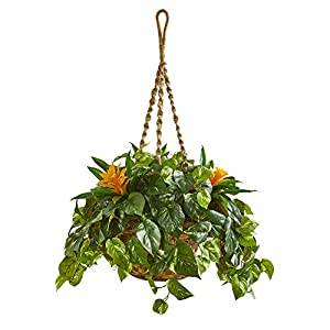Nearly Natural 8398 31-in. Bromeliad & Pothos Artificial Hanging Basket Silk Plants Green 105