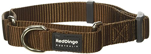 Red Dingo Martingale Classic 20mm Choke Collar, Brown, - Brown Collar Dog Martingale