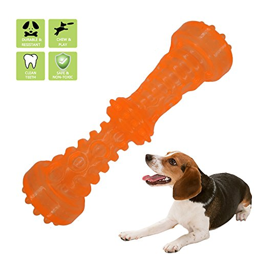 Dilight Dog Squeaky Stick Chew Toy for Puppy Orange Large (Squeaky Dog Toy Chew)