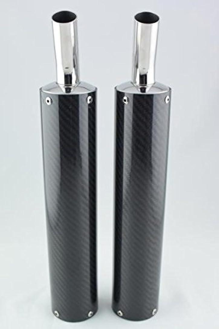 昇進アブセイ感染するカメレオンファクトリー製 チャンバー パラライザー3 レッツ/レッツ2