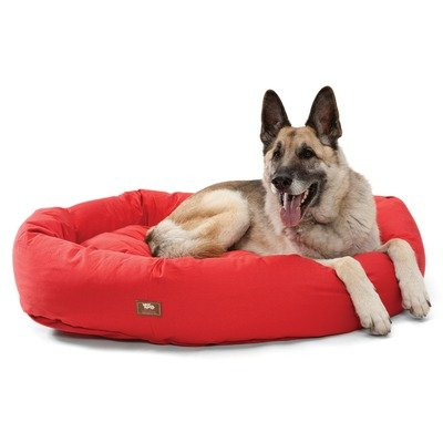 Organic Bumper Bed Dog Bed Size: Large, Color: Basil, My Pet Supplies