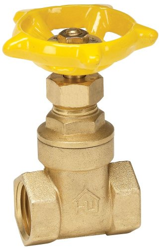 ProChannel VGTCMPB8PA Gate Valve with 200 PSI Brass Threa...