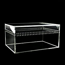 Dalle Craft Acrylic Reptile Terrarium Habitat, Ideal for Larvae spiders, ants, scorpions and other small reptiles (7.8x5.5x4inch)