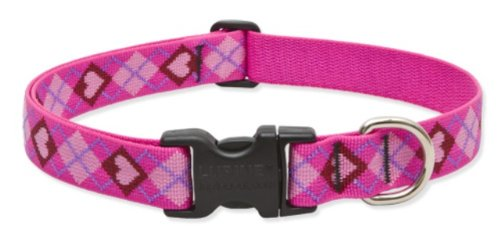 "LupinePet Originals 1"" Puppy Love 16-28"" Adjustable Collar for Large Dogs"