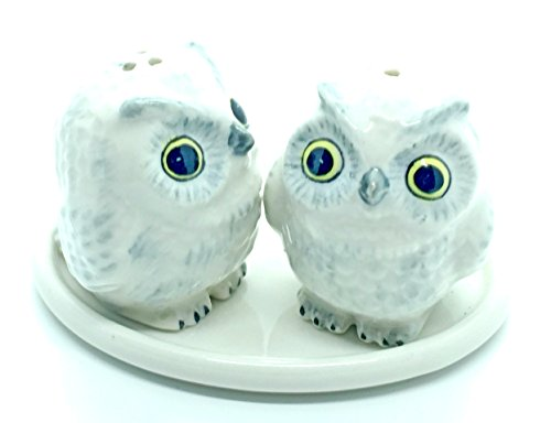 Mexican Pine Armoire (Cute Small Ceramic White Owl Salt and Pepper Shakers Set Hand Painted 1,Tiny salt and pepper shakers)