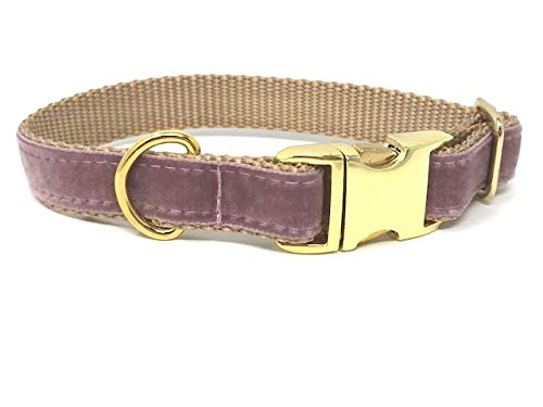 Big Pup Pet Fashion Rose/Mauve + Gold Velvet Dog Collar for Girls with Gold Brass Hardware & Buckle (S 3/4