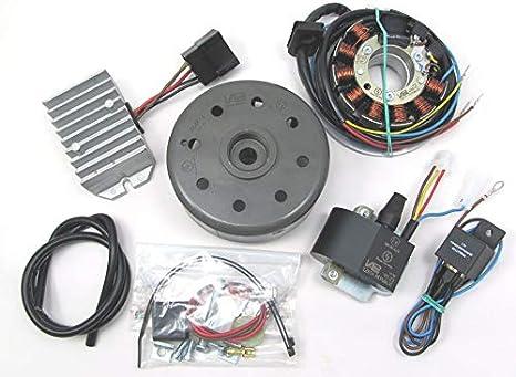 Powerdynamo VAPE Sistema de encendido Estator MZ ETZ 250 251 301 ...