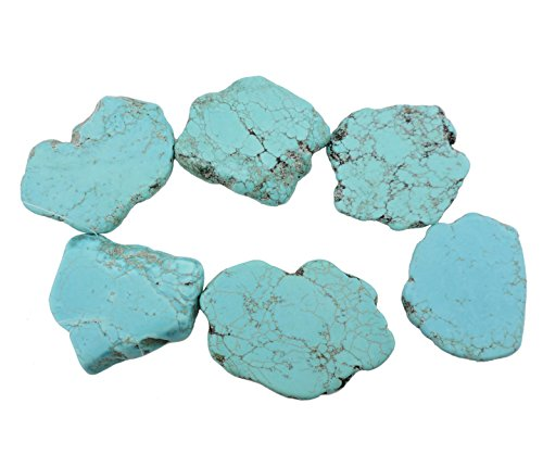 COIRIS 20pcs Natural Turquoise Gemstone Big Irregular Shape Chips Stone Loose Beads for Jewelry Making (ZS-1134-M)