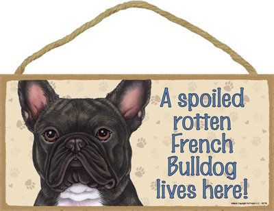 french bulldog dozen - 2