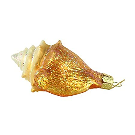 41UuxwBCMBL._SS450_ Seashell Christmas Ornaments