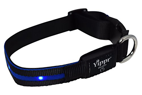 Premium LED Dog Collar Yippr product image