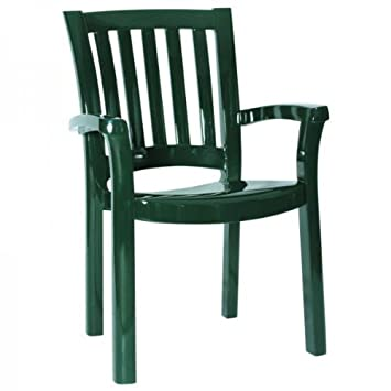 Sunshine Resin Dining Arm Chair in Green – Set of 4
