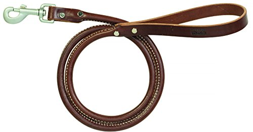 (Terrain D.O.G. Bridle Leather Rolled Dog Leash)