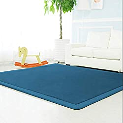 HIGOGOGO Memory Foam Coral Velvet Non Slip Living Room Carpet, 3CM Thick Children Crawling Mat, Pure Color 31 by 78 inch Children Play Mat Soft Bedroom Mat Area Rug