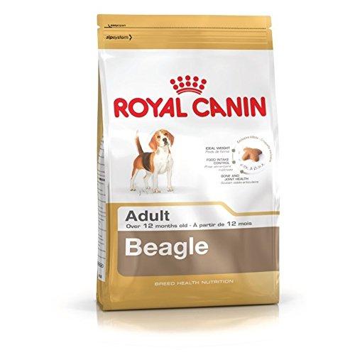 ROYAL CANIN/BEAGLE ADULT sac de 3 kg croquettes pour Beagle à partir de 12 mois