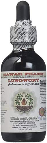 Lungwort Alcohol-FREE Liquid Extract, Organic Lungwort (Pulmonaria officinalis) Dried Leaf Glycerite Hawaii Pharm Natural Herbal Supplement 2 oz