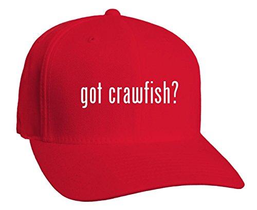 got crawfish? Adult Baseball Hat, Red, Small/Medium