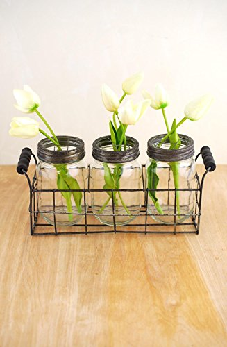 Richland Wire Basket with 3 Glass Mason Jars with Frog Lids