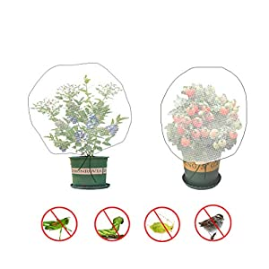 Sirozi 4 Pack Plant Bird Barrier Net Mesh with Drawstring, 3.5Ftx2.3Ft Plant Protective Cover Garden Flower Screen…