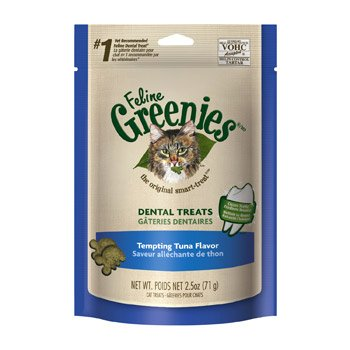 FELINE GREENIES Dental Cat Treats 41UwTv6DLfL