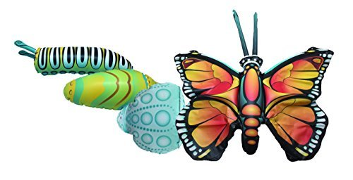 Giant Inflatable Butterfly Life Cycle Stages 4 Piece Set