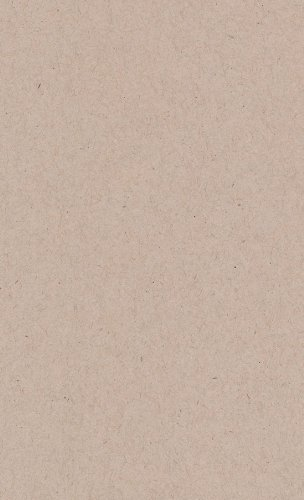 Desert Storm Smooth Cardstock, 8 1/2 x 14 Environment 80lb Cover, 25 (Environment 80 Lb Cover)