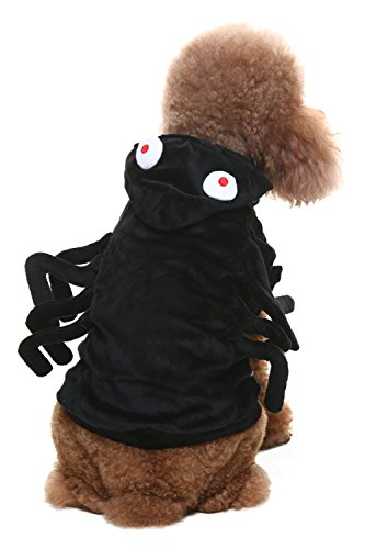 Pitbull Halloween Costumes (Spider Dog Halloween Costume Medium Black by BINGPET)