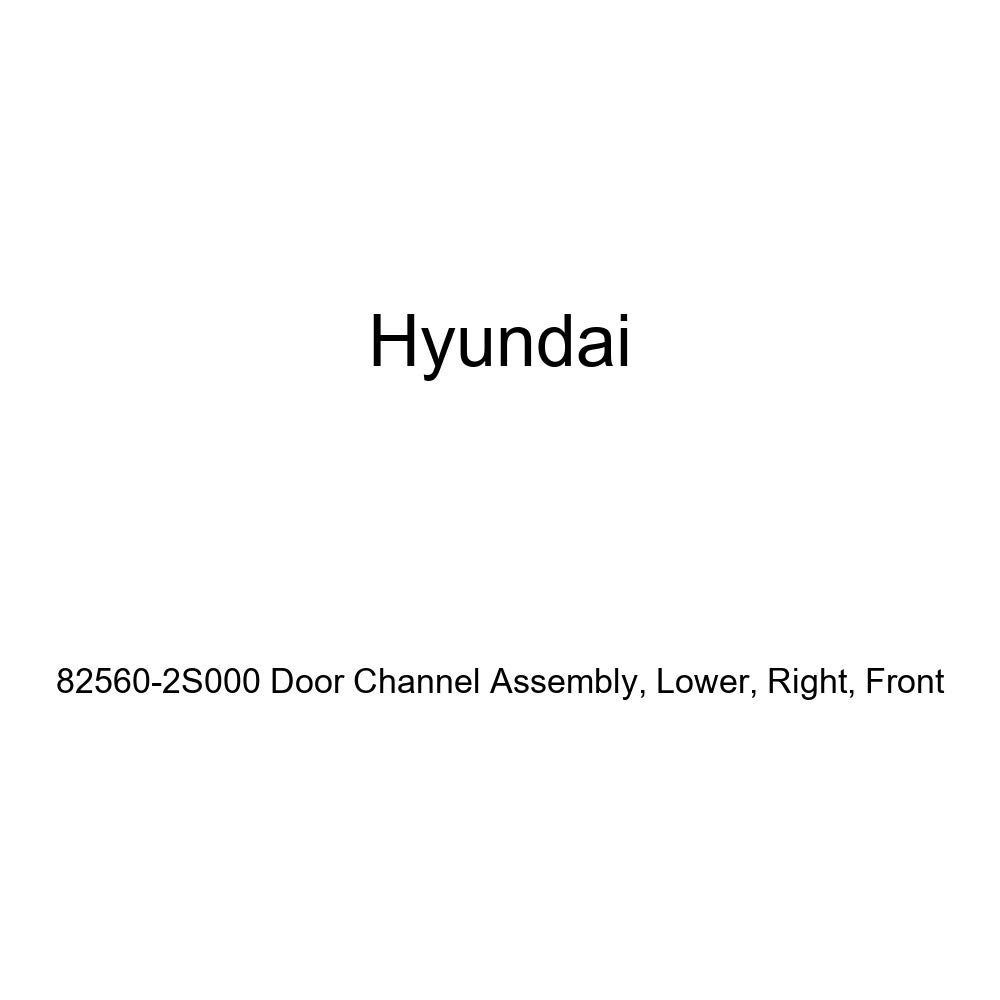 Front Genuine Hyundai 82560-2S000 Door Channel Assembly Right Lower