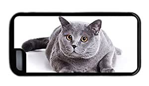 Funny thinnest iphone covers Gray fat cat TPU Black for Apple iPhone 5C
