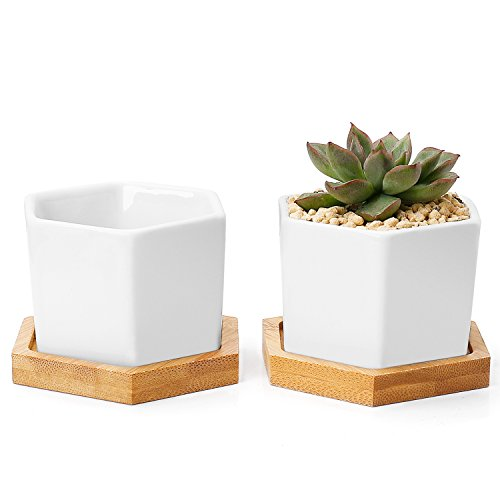 Grennaholics Flower Pots - Mini Ceramic Garden Pots, Small Planter, Regular Hexagon Plant Pots with Drainage Hole, Bamboo Trays, Minimalism Series, Set of 2, White