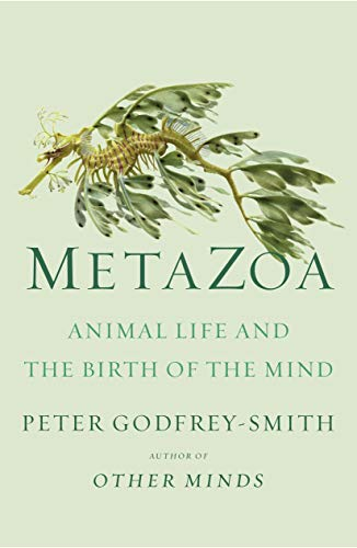 Book Cover: Metazoa: Animal Life and the Birth of the Mind